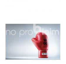 Kunstprojekt Boxhandschuh aufblasbar - Borealis Karl Heinz Ströhle - We Got The Power - Bildrechte Staudinger-Stelzhammer