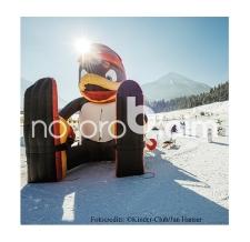 Luft Figur - aufblasbare riesige Figuren - Anfertigung nach Kundenwunsch - aufblasbarer Pinguin Bobo