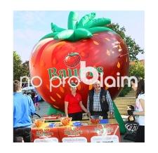 aufblasbarer Verkaufsstand - aufblasbare Produktnachbildung - Erdbeere Bauers